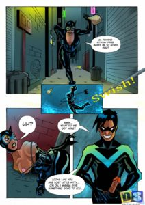 nightwing and catwoman 01 41355279.jpg
