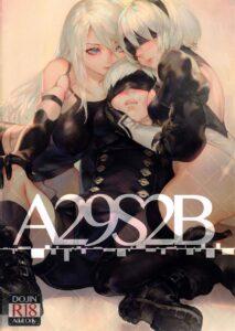 A29S2B page00 Cover_ _17389604 lq.jpg